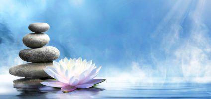 Pranic Healing® Delavnice