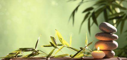 Pranic Healing Terapije